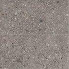Adriana FUTURA TORTORA 30x60 imitace kamene